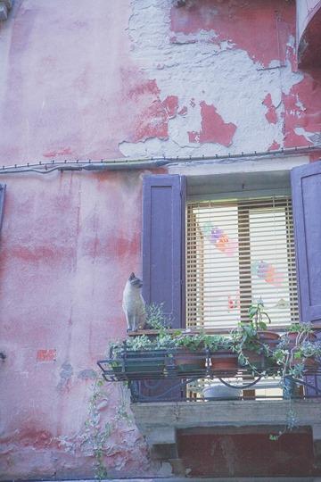 DLAD-Venice-34